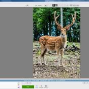 8x gratis software voor fotobewerking © Photoshop, alternatief, freeware, beeldbewerking, Picasa