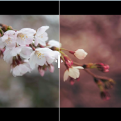 Sneak peek: de nieuwe updates van Adobe Photoshop en Lightroom © IDG NL
