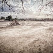 Workshop landschapsfotografie met de Panasonic Lumix G9 © artikel, panasonic, sylvester