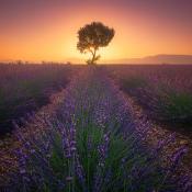 De mooiste fotografiebestemmingen van Europa © mooiste, bestemmingen, Europa