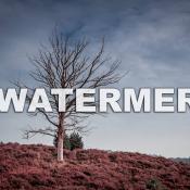 Een watermerk in je foto, doen of niet? © watermerk, heide, eline