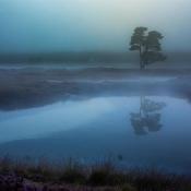 Composities voor landschapsfotografie: regel van derden © IDG NL