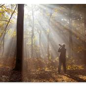9 tips voor fotogenieke locaties in Nederland