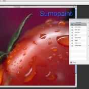 5 gratis online alternatieven voor Photoshop © Photoshop, beeldbewerking, Pixlr, Sumopaint, Ribbet, PicMonkey