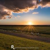 Expertuitdaging: Hollandse landschappen vastleggen © schapen, dijk, zonsondergang