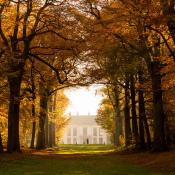 De mooiste bossen voor de perfecte herfstwandeling