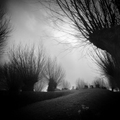 Fotodokter: Landschap in zwart-wit © Fotodokter, zwart, wit, landschap