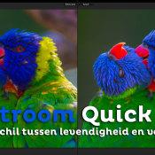 Het verschil tussen verzadiging en levendigheid | Lightroom Quick Tip © thumbnail, quick, tip, levendigheid, verzadiging