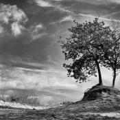 Resultaten expertuitdaging: zwart-wit landschappen © artikel, expert, zwartwit
