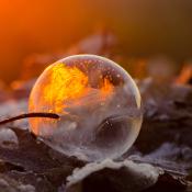 Expertuitdaging: Bevroren zeepbellen fotograferen! © bevroren, zeep, zeepbel