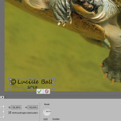Photoshop: Digitale handtekening © handtekening, digitale handtekening, copyright, 3