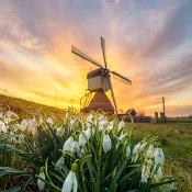 Hoe breng je de lente in beeld? - 5 Tips voor prachtige lentefoto's © tips, lente, fotograferen