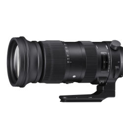 Sigma 60-600mm 1:4.5-6.3 DG OS HSM Sports