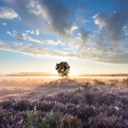 Landschapsfotografie: de basisregels