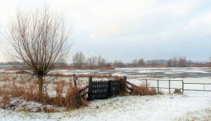 winter, Nederland, sneeuw, fotograferen, ijs, wit_1
