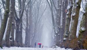 sneeuw, nederland, winter_3